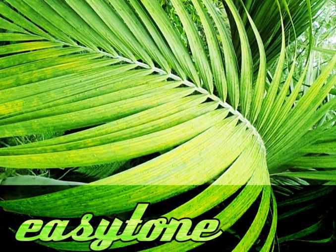Easytone cover